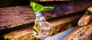 economía circular para hacer un consumo responsable