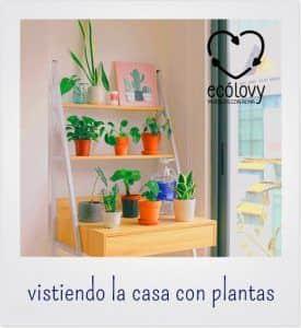 Decoración de interiores con plantas para una habitación