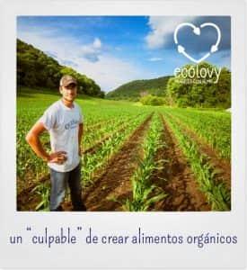 beneficios de los productos orgánicos y la agricultura ecológica