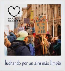 Ejemplos de movimientos ecologistas en el mundo