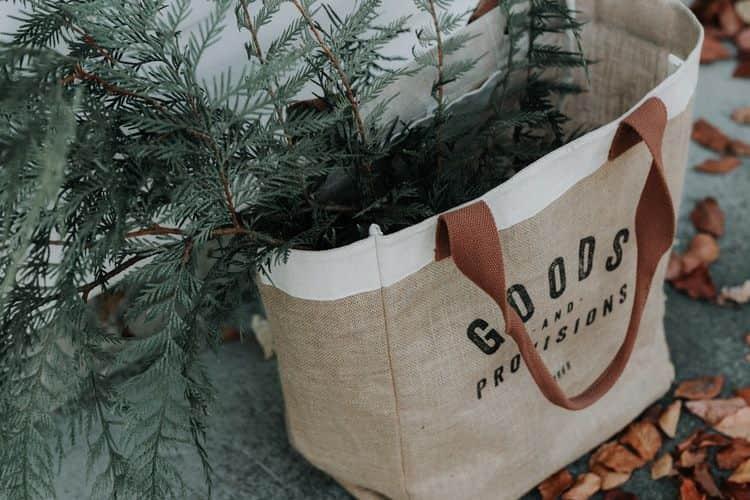 bolsas-tela-ecológicas-ecobolsas