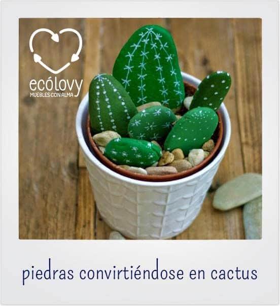 piedras y cactus para decorar casa con poco dinero