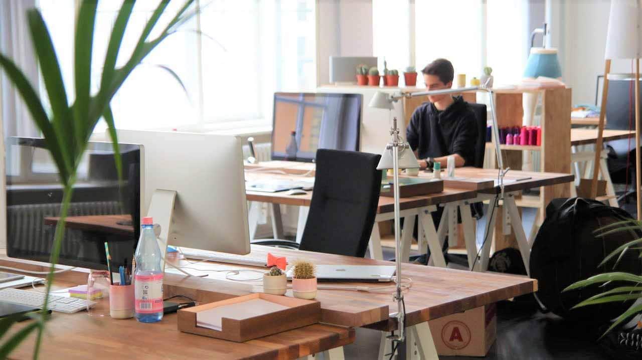 descubre las características de una empresa sostenible
