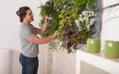 Decoración de paredes: mejora tu hogar cambiando algo tan simple…
