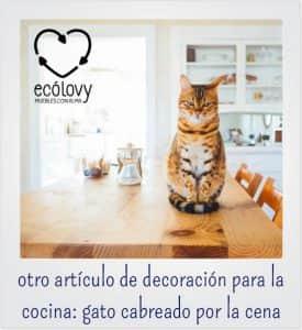 Muebles auxiliares de cocina para disfrutas de familia y amigos